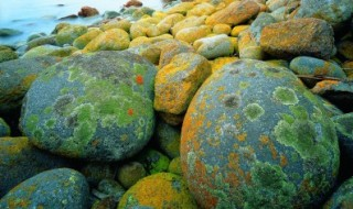 coastal rocks pic